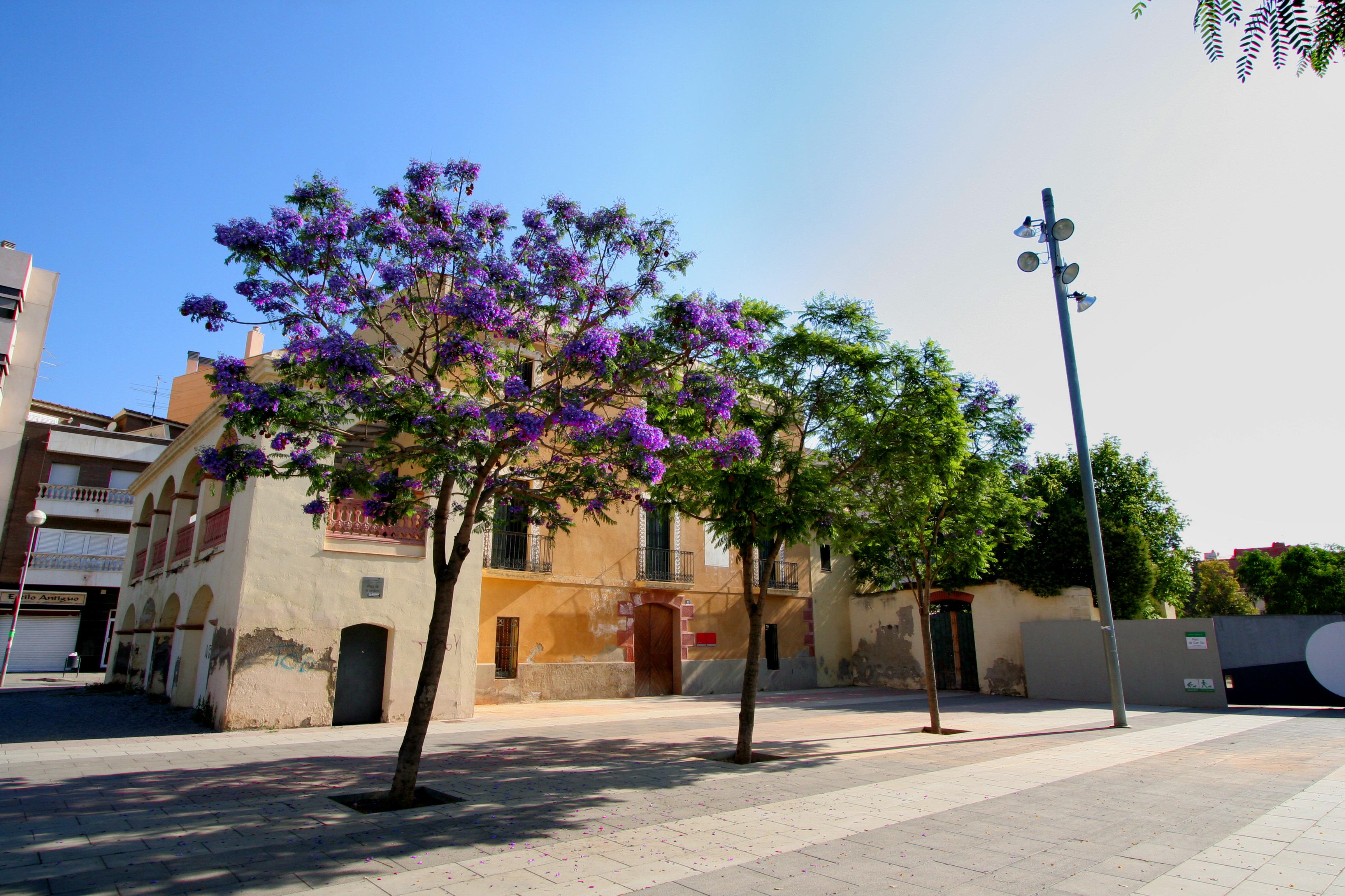 Font: Fons Ajuntament de Viladecans, AMVA